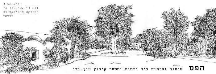 YoavAmir - Studio