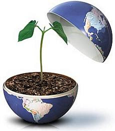 semana do meio ambiente e da ecologia