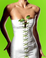 Moda Ecológica
