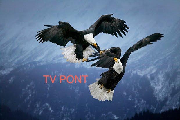 tv pont