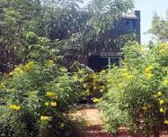 ஓஷோ சாஸ்வதம்