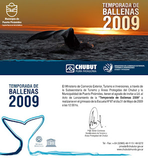 Whale Watching Patagonia Open Season 2009