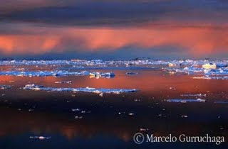 Nature and Adventure Photographer Antartica his last photo book