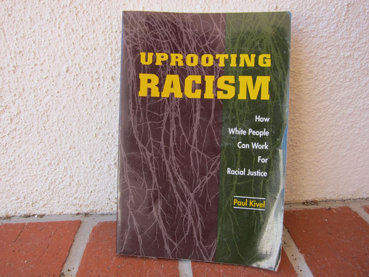uprooting racism Several years ago roots committed to offering uprooting racism and undoing oppression training at each roots week we contracted outside facilitators to conduct these sessions and from the feedback, we recognized that members really wanted to do this work ourselves.