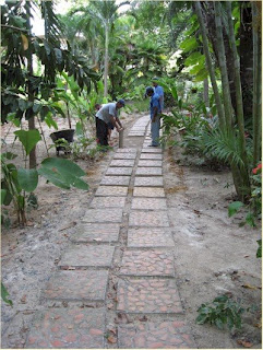 Photo of three Mango Creek Lodge employees replacing stepping stones on a pathway