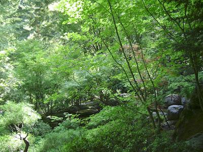 entering a Japanese garden