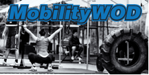 Kelly Starrett's Mobility Blog