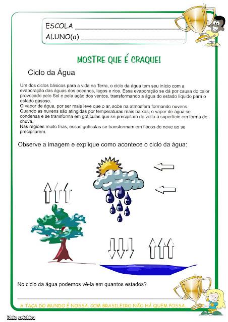 Atividades OS Estados Físicos da Água EO ciclo da Água