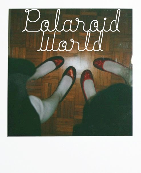 Polaroid World
