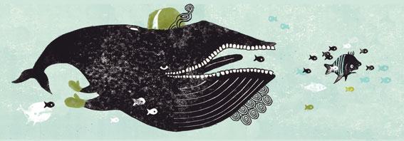 walvis, van de soort van de tandwalvissen