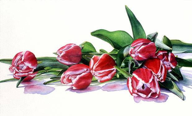 [G+Swanson_Tulips_18x30_watercolor.jpg]