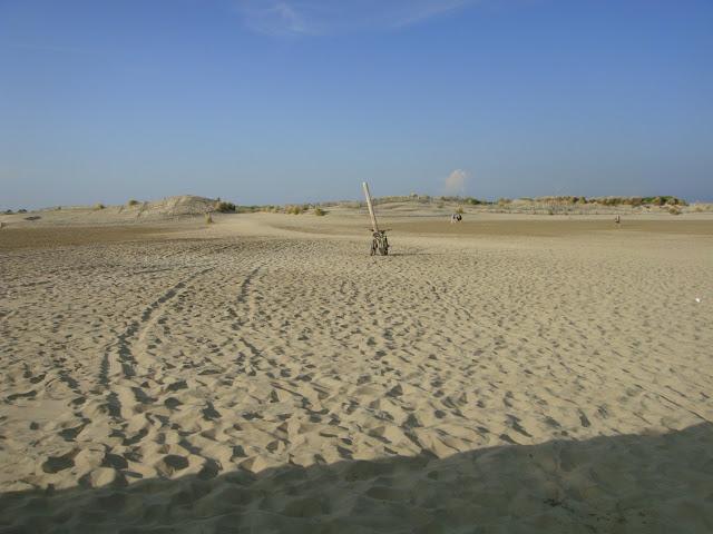 plage camargue