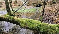 Canal de Bernistap, Tavigny Buret en Ardennes