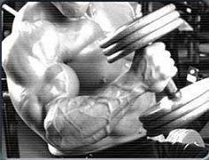 Muscle training Program Maximum