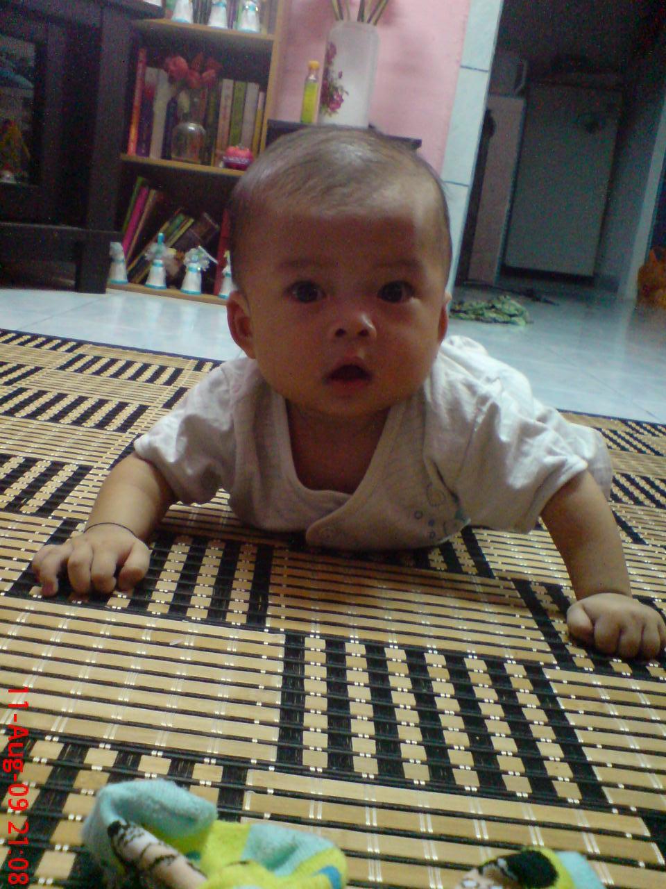 Anas - 7 months (6.7 kg)