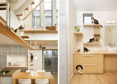 interior design | coolest cat friendly house design from japan