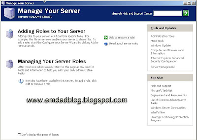 Windows Server 2003 role detail