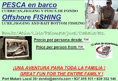 WWW.DENILO.COM SALIDAS EN BARCO, CURRI,JIGGING, A FONDO.