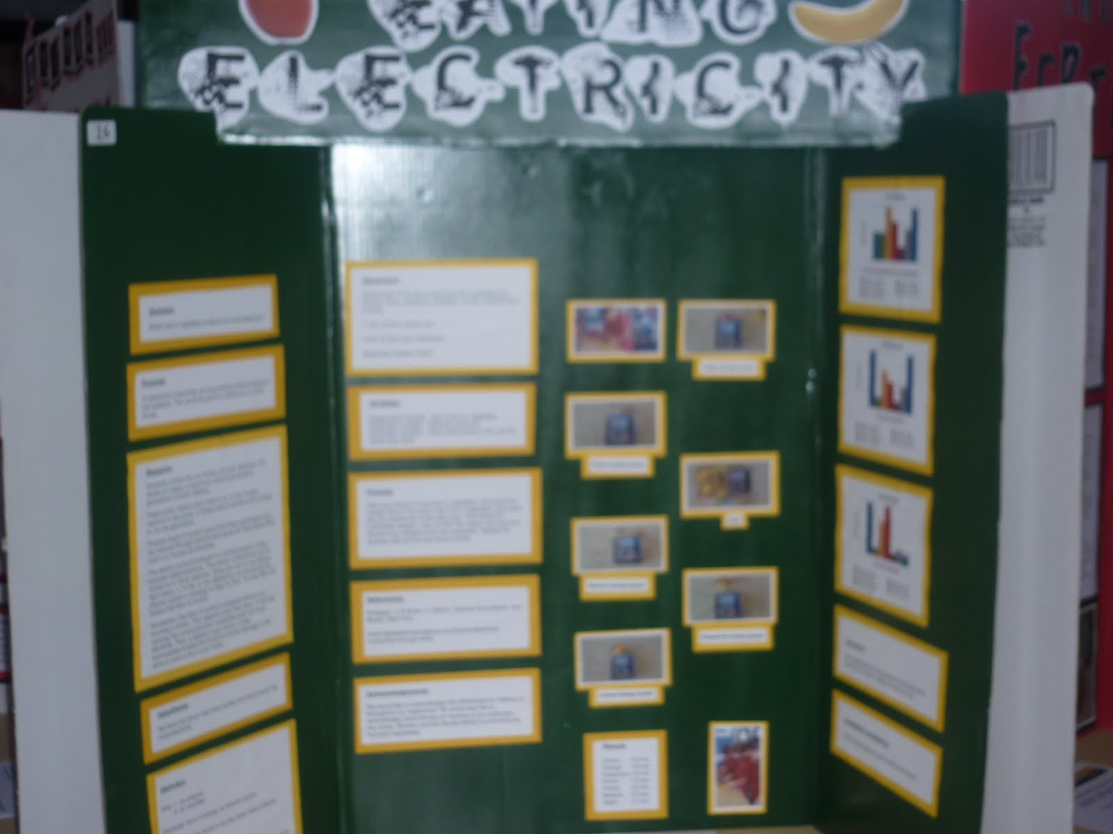 prize winning science fair projects The 14-year-old agarwal's project is one of 30, chosen as a broadcom math, applied science, technology, and engineering for rising stars (masters) finalist these science fair projects were.
