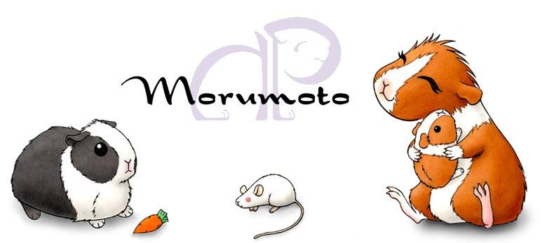Morumoto