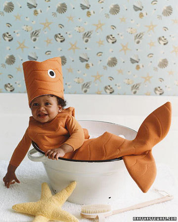 Dolce cape cod okay martha i 39 m ready now for Baby fish costume