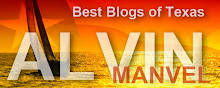 Best Of Texas Blogs: Alvin/Manvel