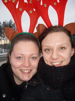 Zwei Elche in Finnland ...
