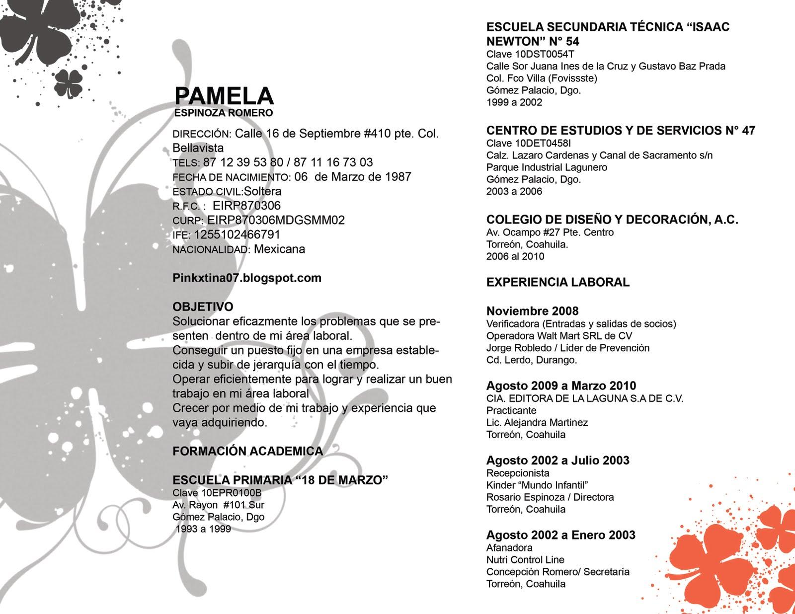 Magnífico Plantilla De Currículum Académico Escuela Secundaria ...