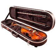 A violin is kept in a case like the above~
