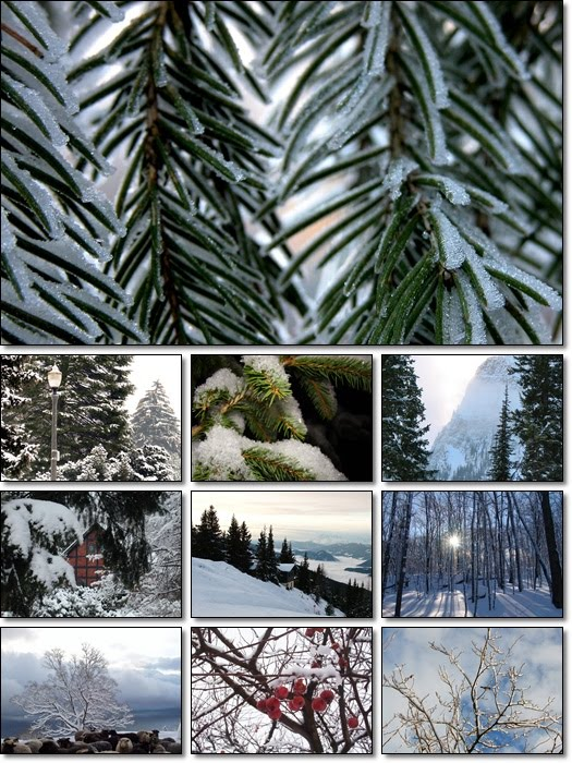 Winter Landscapes 1600x1200 Wallpapers Pack