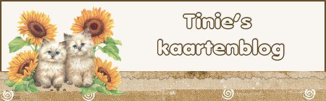 Tinies Kaartenblog