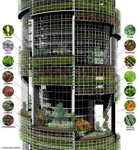 Vertical Farm Design