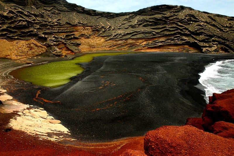 Resultado de imagen de Hipolitos: viven dentro de las rocas de los desiertos fríos
