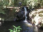 Fonte natural de água
