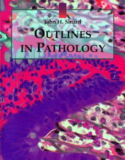 outlines of pathology