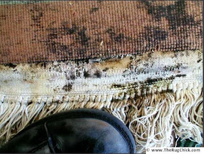 how to clean mould off leather clothes