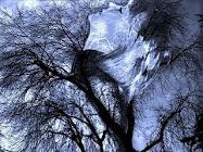 En el viento (Un bello presente del alma luminosa de la dulce Yezel)