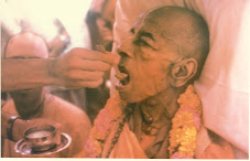 Prabhupada Departs Surrounded by Crocodile Tears