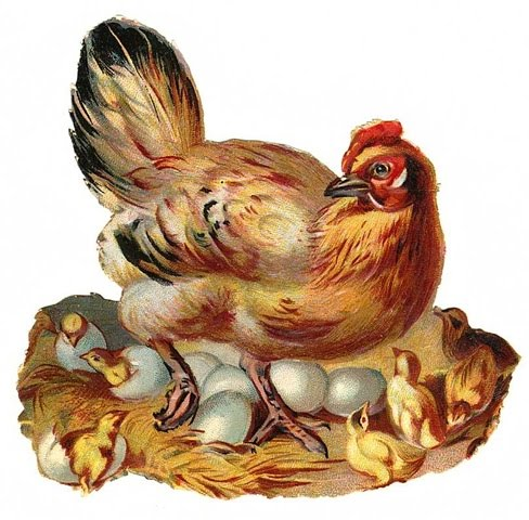Baby Easter Chicks Clip Art Free