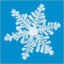 charlotte closings snow