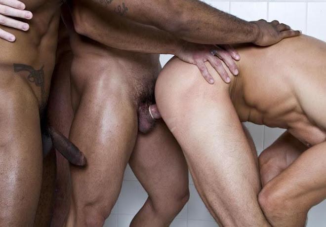 Gay Action XXX