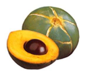 fruta lucuma