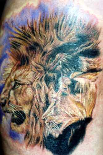 Opaque Tattoo Print Pantyhose Lion