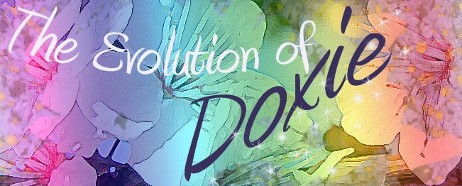 The Evolution of Doxie