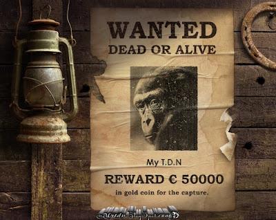 Gorille disparue Rechercher