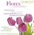 Flores de ocasión