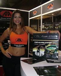 Motor fest 2010