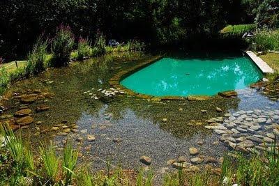 Estanque y piscina a la vez es posible tener plantas y for Piscina martorell
