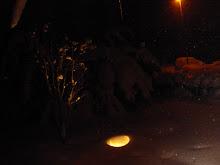 I går kväll i snöyran.