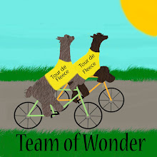 Team of Wonder